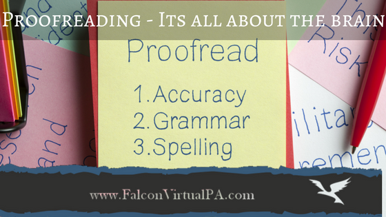 Blog Post: Proofreading - It's all about the brain by Falcon Virtual PA in Cashmere QLD